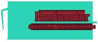 Producator Sticla Termopan